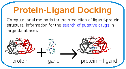 Protein-Ligand Docking